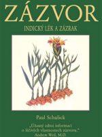 zázvor-kniha
